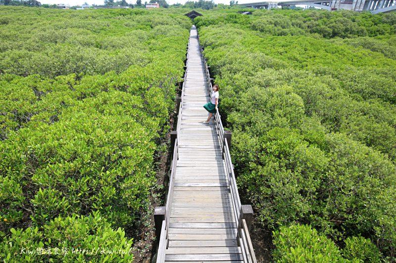 新豐景點推薦|新竹紅樹林隧道 宛若龍貓隧道 網紅IG打卡熱點 一日輕旅行