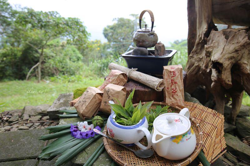 屏東寶山部落|寶山部落野趣茶席體驗,寶山拿普原生茶有機茶園,品茗茶推薦台灣原生高山茶、紅茶
