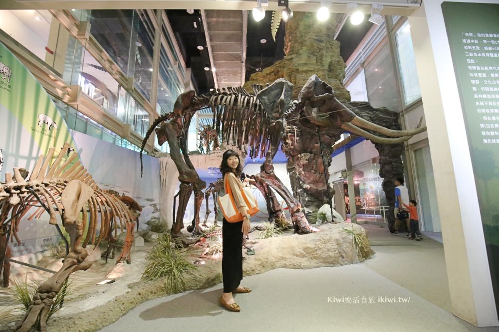 台南樹谷生活科學館|台南親子景點推薦,銅板價暢遊迷你版侏羅紀世界,樹谷農場,台南一日遊推薦