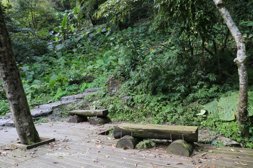 宜蘭鳩之澤步道