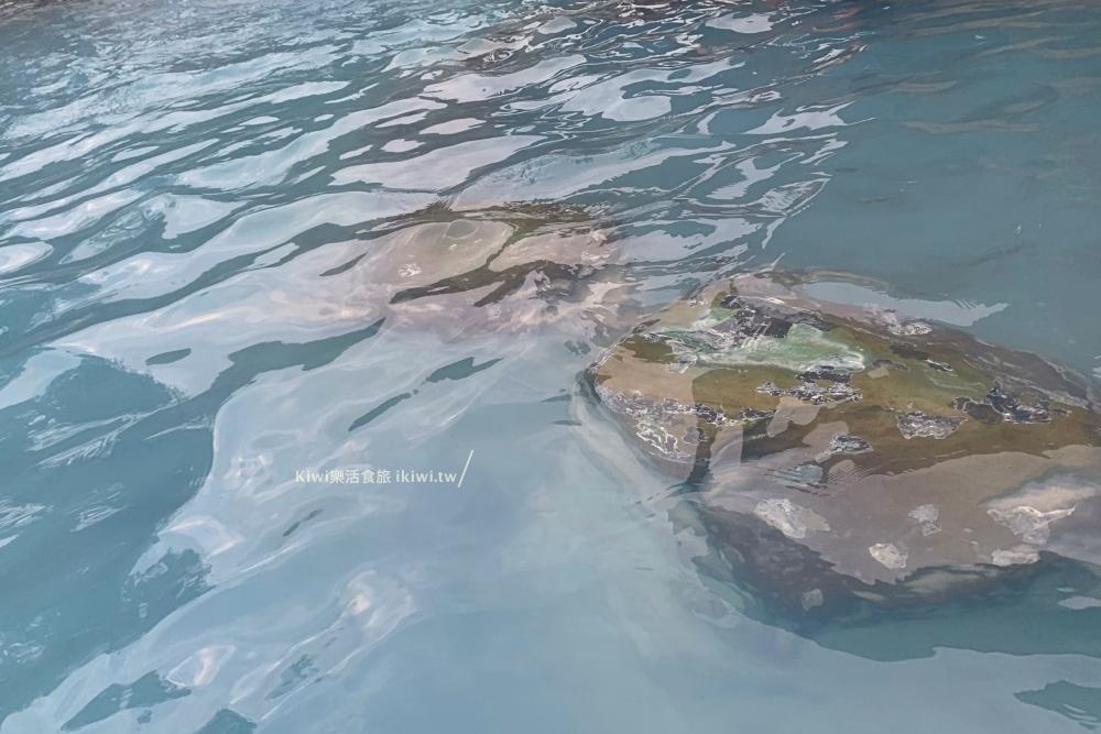 宜蘭鳩之澤溫泉露天溫泉池環境
