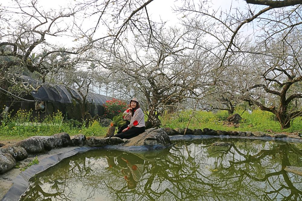 南投東埔烏松崙森林渡假營石家梅園