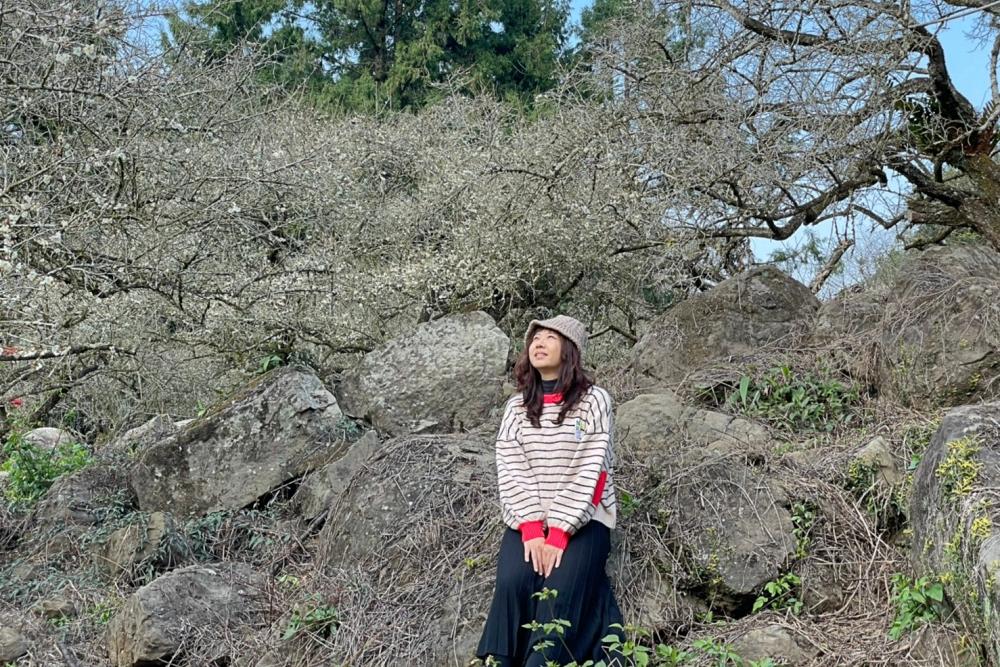 烏松崙森林渡假營石家梅園