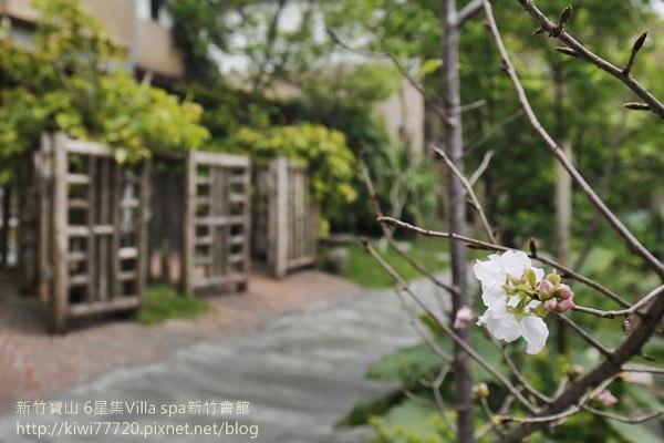 新竹寶山 6星集Villa spa新竹會館8461