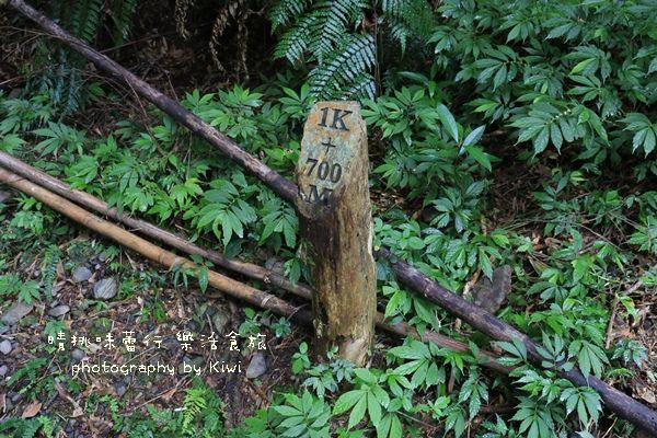 宜蘭礁溪林美石磐步道8195