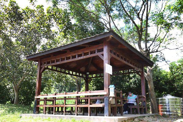 埔里桃米坑親水公園夏日玩水中部免費景點免費玩水景點南投景點159490_o