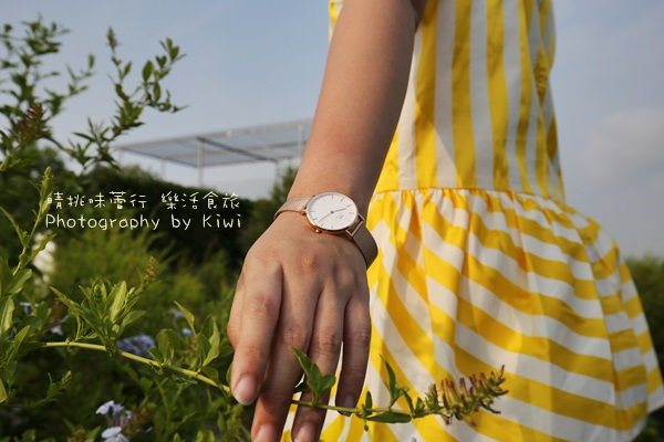 【DW手錶】Daniel Wellington Classic Petite金屬錶帶系列簡單設計典雅造型又大方百搭錶必敗!(粉絲專屬優惠折扣)