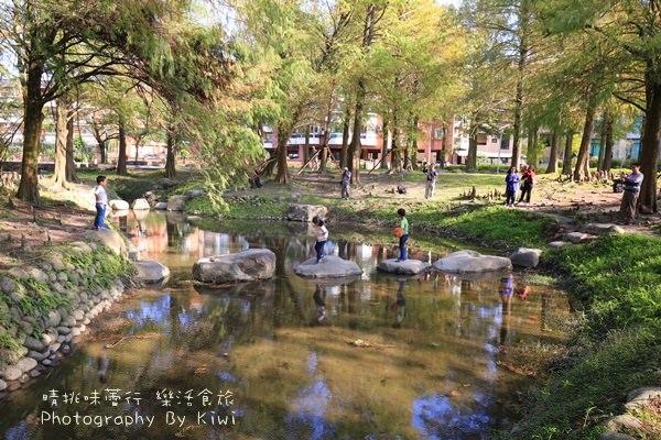 宜蘭景點|羅東運動公園落雨松私房秘境 草皮好適合親子嬉戲幽靜(羅東一日遊景點推薦)