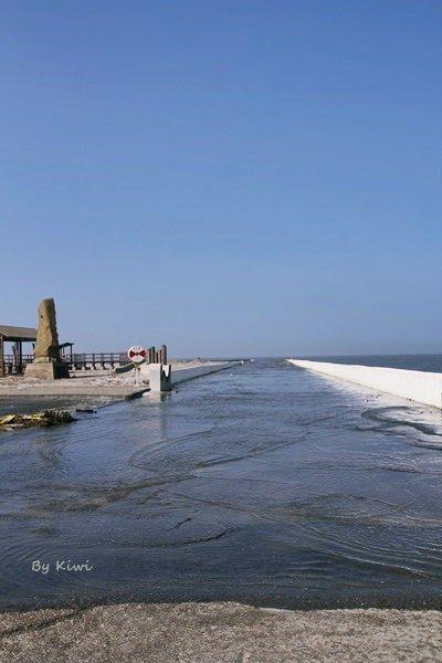 【彰化福興】學摩西過紅海?福寶生態教育園區、福寶濕地(潮間帶)、福寶海堤、漂流木地景藝術